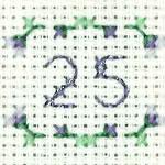 25 - Silver Wedding