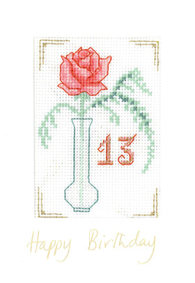 Pink Fizz Age Birthday card cross stitch kit